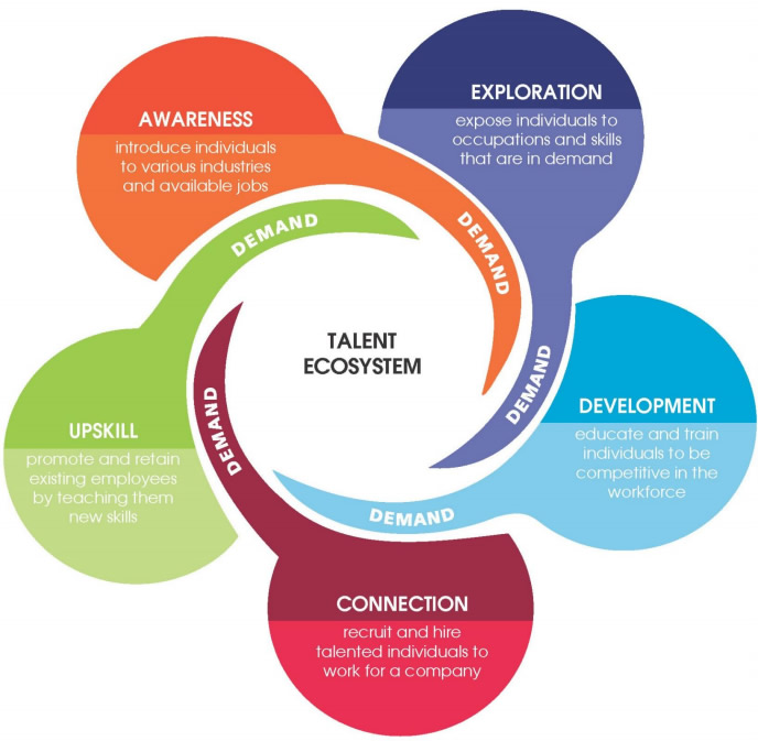 A successful Talent Ecosystem demands awareness, exploration, development, connection and upskill.